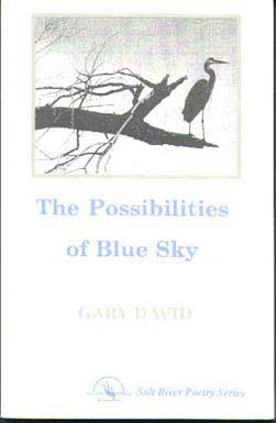 The Possibilities of Blue Sky cover