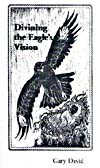 Divining the Eagle's Vision thumbnail